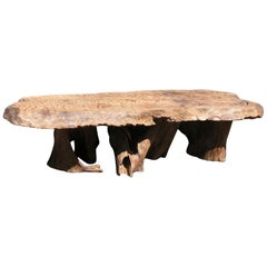 Natural Salvaged Wavy Wood Bench or Coffee Table Root Base Gallery Bench
