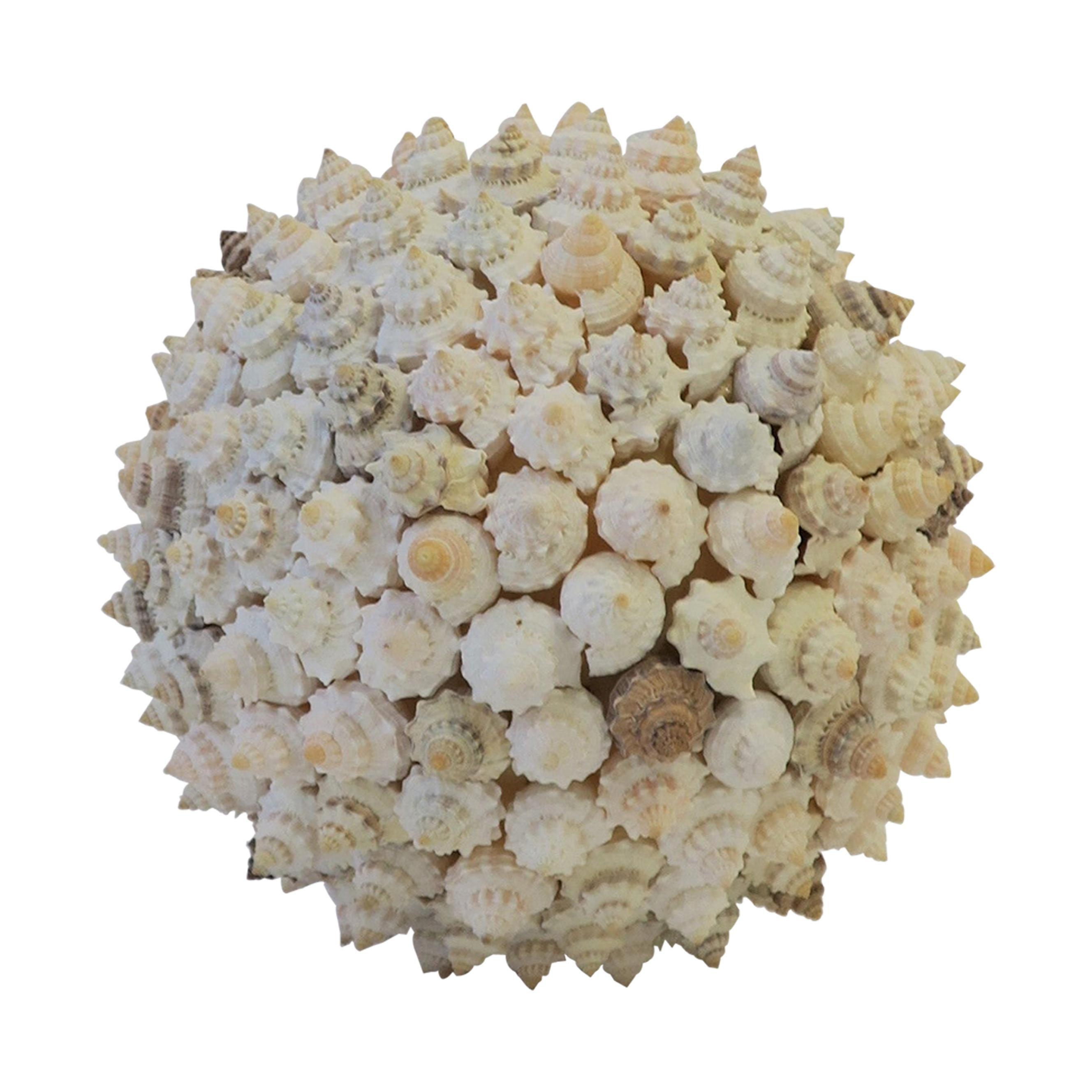 Sea Shell Seashell Sphere Sculpture