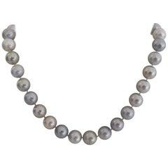 Natural Silver Color South Sea Pearls 18 Karat Gold