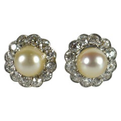 Natural White Pearl Diamond Cluster Stud Earrings