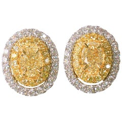 Natural Yellow Oval with White Jacket Earring 1.58 Carat Total Diamonds 18K Gold