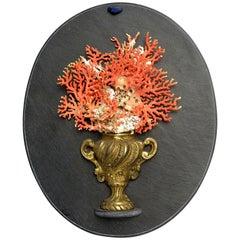 Naturalia Specimen, Branches of Mediterranean Coral, Italy, 1850