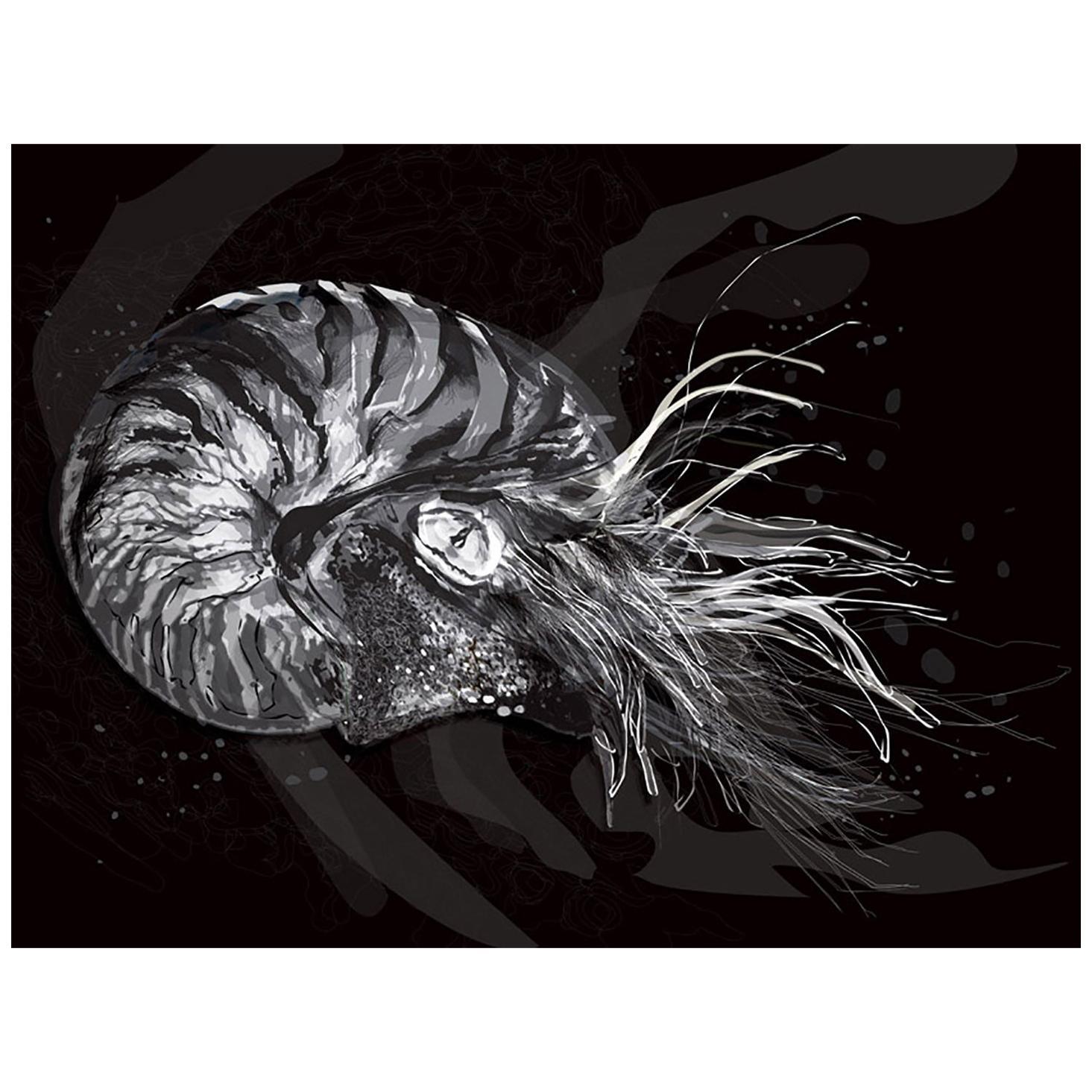 Nautilus 2 / Nueva Zoología / Selene Lazcarro