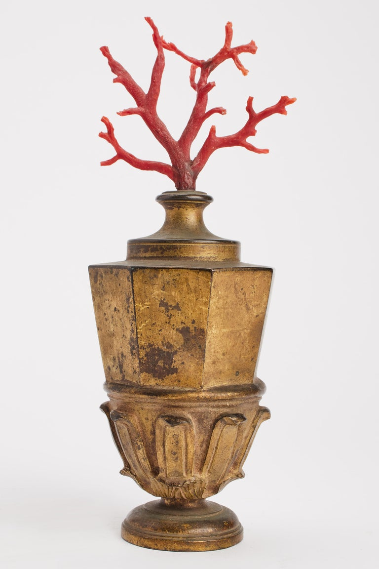 A Wunderkammer pair of Mediterranean coral branches mounted on a golden bronze bases. Neaples, Italy, mid-19th century.