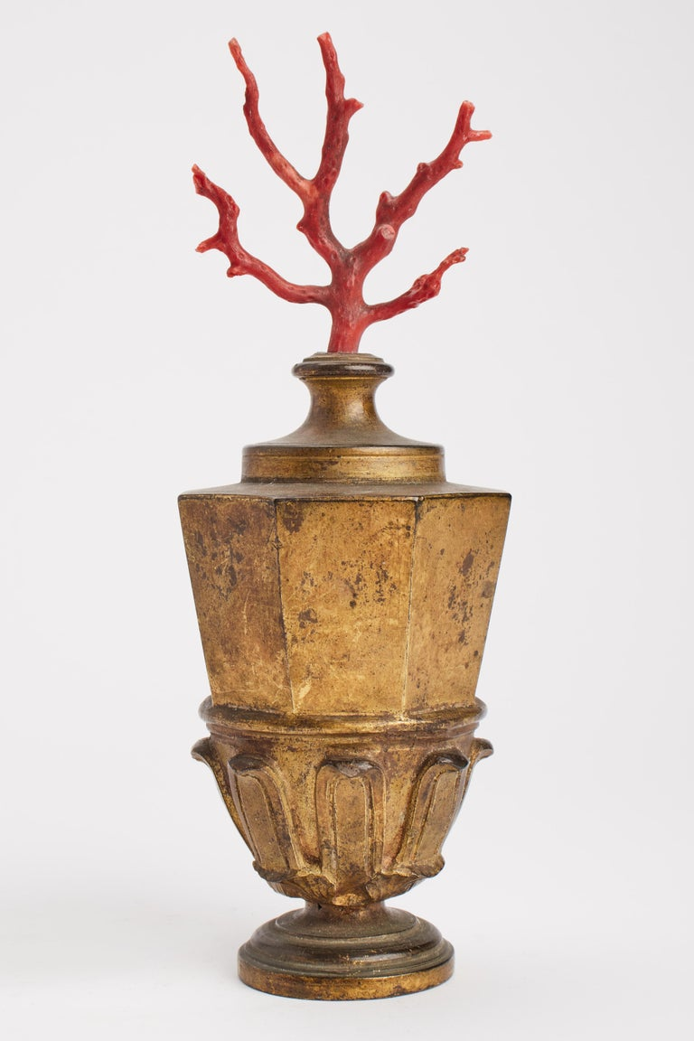 Italian Neaples, Mid-19th Century Pair of Mediterranean Coral Branches For Sale