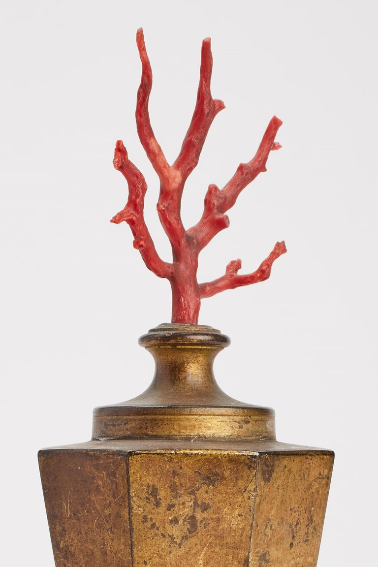 Neaples, Mid-19th Century Pair of Mediterranean Coral Branches In Excellent Condition For Sale In Milan, IT