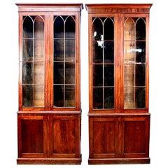 Near Pair of 9' Georgian Style Mütter Museum Mahogany Library Display Cabinets