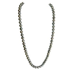 Necklace of Cultured Grey Pearls