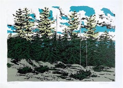 FROM ZEKE'S PLACE, Signed Lithograph, Maine Landscape, Trees, Aqua, Green, Gray
