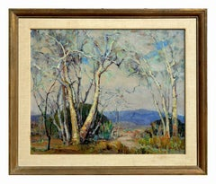 1940's Carmel Landscape Sycamore Grove