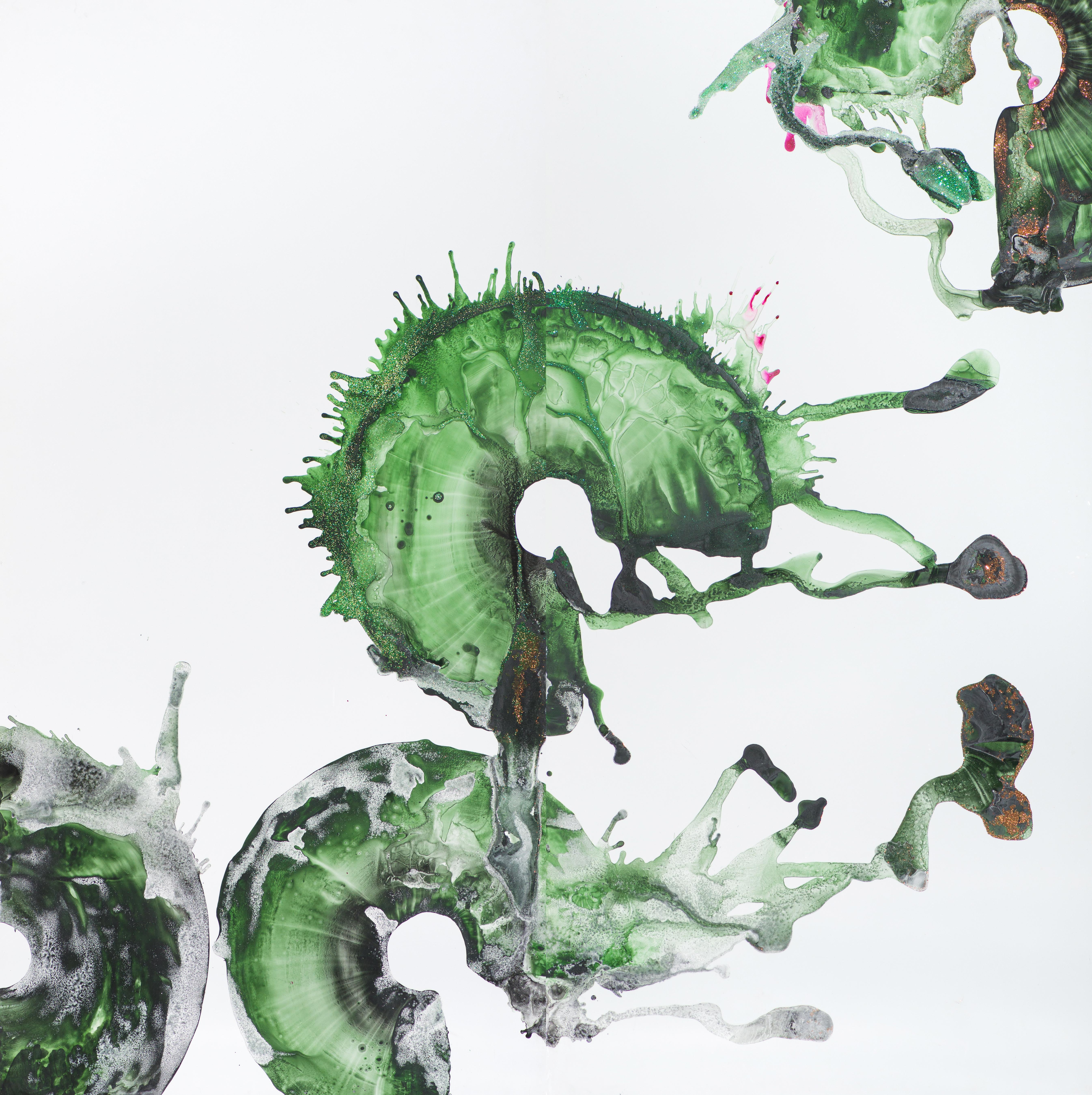 Spirulina - Hookers Green Rings 1
