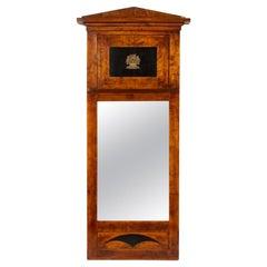 Neoclassical Northern Italian Pier Mirror, Mahogany with Ebony and Gilt Bronze