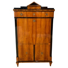Neoclassical Biedermeier Secretaire, Cherry Veneer, South Germany circa 1820