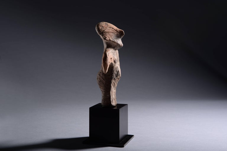 A large, well preserved Vinca idol, from south eastern Europe, dating to the 5th Millennium BC.   Depicting a standing female deity with a pot belly and large rounded buttocks. The arms held out and curving downwards, her triangular head gently
