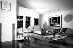 Nic Nicosia, livingroom #3 with ravens act 7 and the narrator 5.9.2016