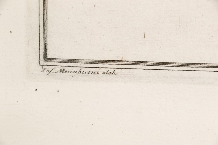 Rococo Niccolo Gualtieri, Florentine Conchologist/Artist, Two Framed 1742 Engravings For Sale