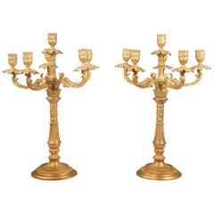 Nice Pair of Late 19th Century Gilt Bronze Six-Light Candelabra