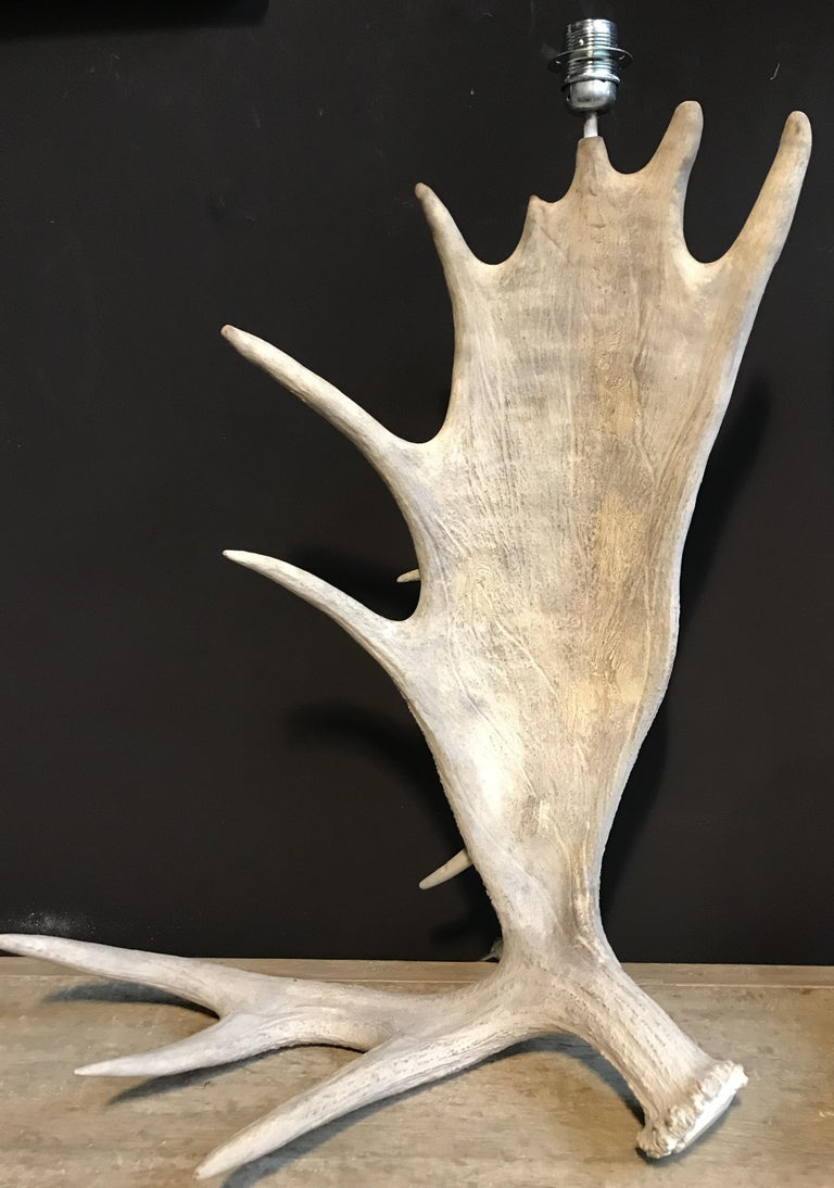 Nice pair of table lamps made of Canadian moose antlers. The antlers are naturally bleached. The price is without lamp shades. Shades can be provided if wanted.