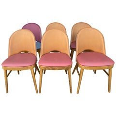 Nice Series of 6 Tonneau Chairs Beech and Moleskin Bicolor