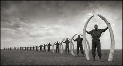 Rangers (Line Of) With Tusks Of Killed – Nick Brandt, Africa, Animal, Elephant