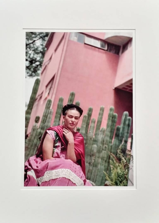 Frida by Organ Cactus Fence - Photograph by Nickolas Muray