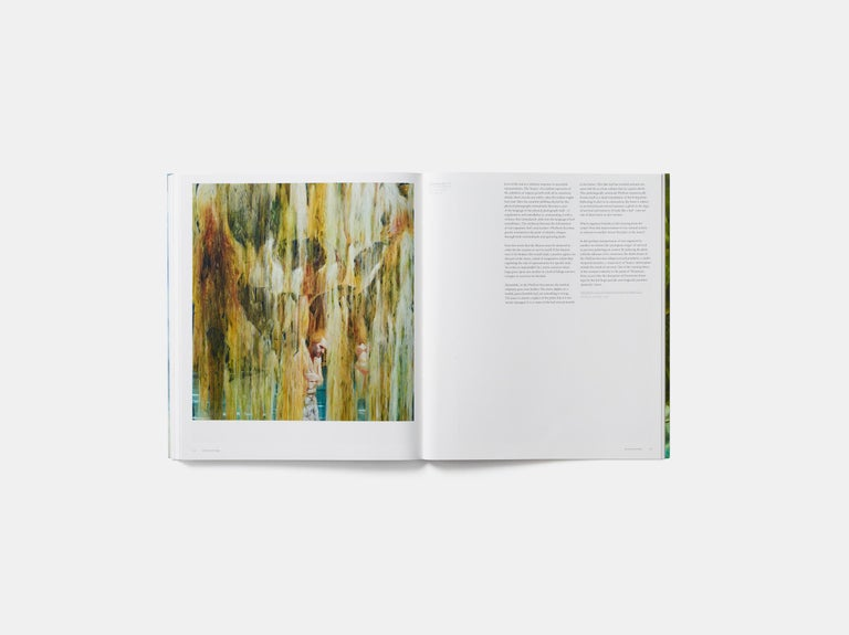 Nigel Cooke 'Phaidon Contemporary Artists Series' For Sale 3