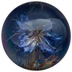 Nigella Flower Paperweight