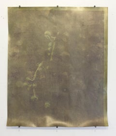 Sedimentation 4a: Gold Mixed Media on Silver Gelatin paper by Nikolai Ishchuk