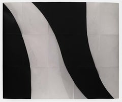 Threshold (14): A Black & White Experimental Photogram on Silver Gelatin paper