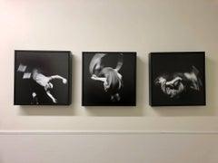 Circus trio / tumbling family / children three framed phoos