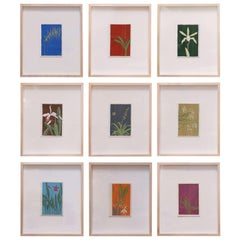 Nine Colorful Orchid Serigraphs