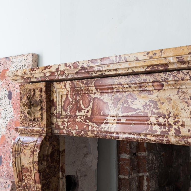 19th Century French Breche Fireplace For Sale 5