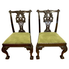 19th Century George III Ball and Claw Chippendale Chairs