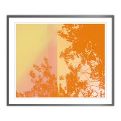 Filters Series - Framed Abstract Orange Photograph - Archival Print