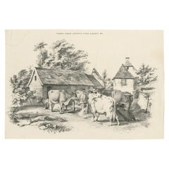 No. 7 Antique Print of Cattle by Cooper