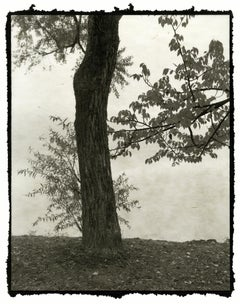 Ma - 21st Century, Platinum/Palladium Print, Contemporary B&W photography