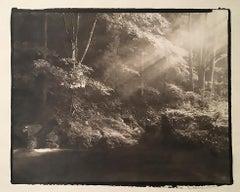 Okumiya 1 - 21st Century, Platinum/Palladium Print, Contemporary B&W photography