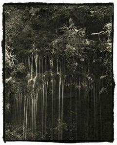 Shin - 21st Century, Platinum/Palladium Print, Contemporary B&W photography