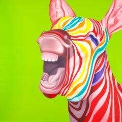 Zebra Baby I'm crazy