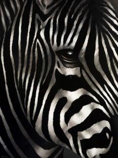 Zebra Le Poète