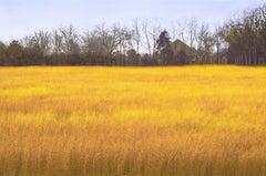 Autumn Fields, Photograph, Archival Ink Jet