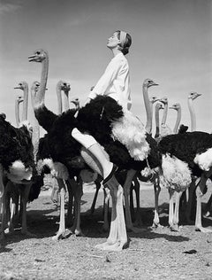 Wenda And Ostriches, South Africa, 1951 - Norman Parkinson (Photography)