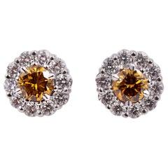 Novel Collection GIA Certified Orange Diamond Earring Studs in 18 Karat Gold