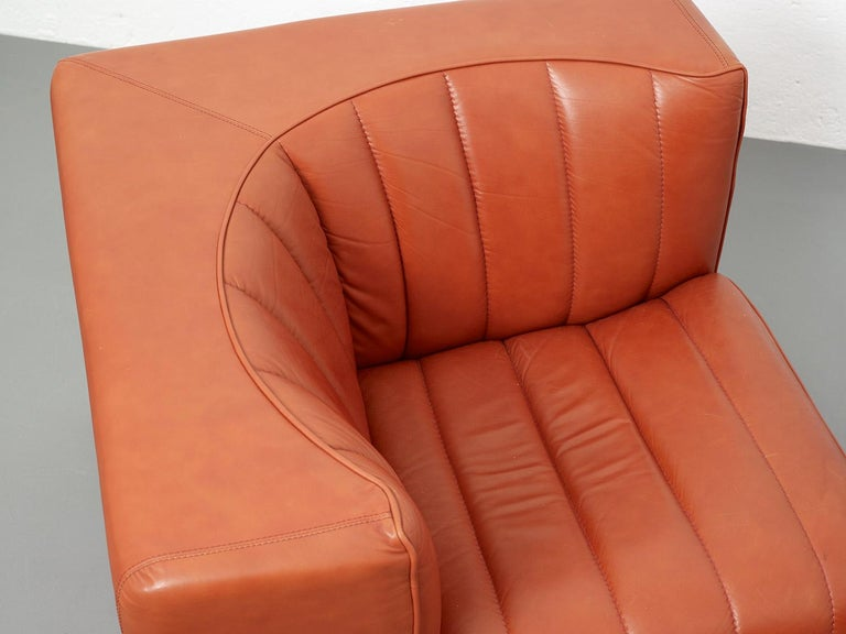 Novemila Leather Sofa by Tito Agnoli, Arflex, Italy, 1969 For Sale 5