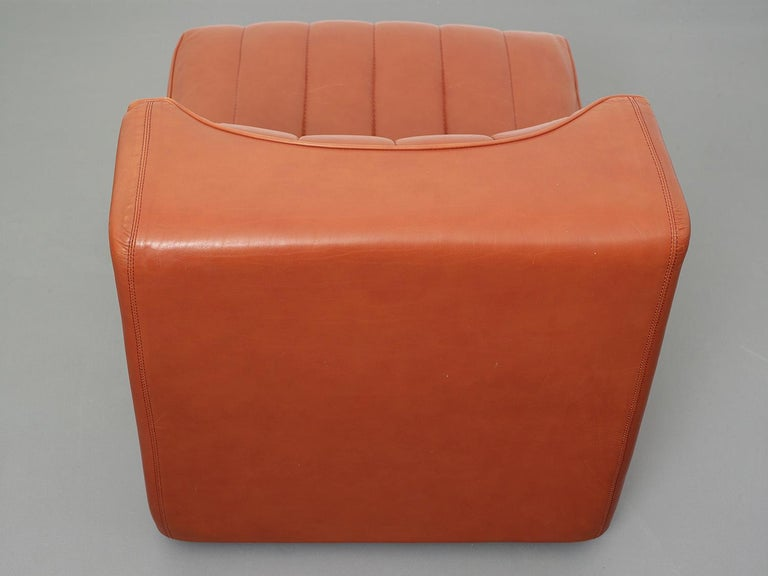 Novemila Leather Sofa by Tito Agnoli, Arflex, Italy, 1969 For Sale 7