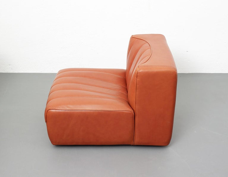 Italian Novemila Leather Sofa by Tito Agnoli, Arflex, Italy, 1969 For Sale