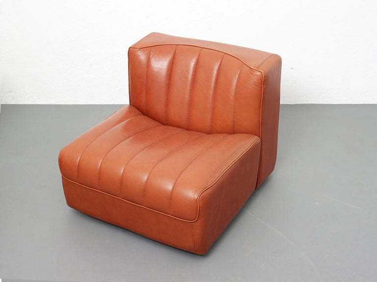 Novemila Leather Sofa by Tito Agnoli, Arflex, Italy, 1969 In Good Condition For Sale In Renens, CH