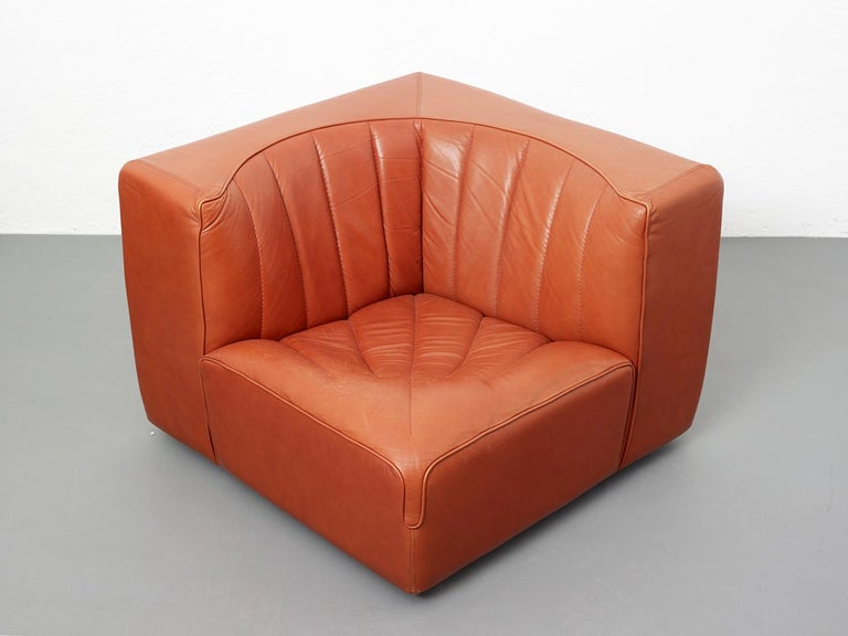 Novemila Leather Sofa by Tito Agnoli, Arflex, Italy, 1969 For Sale 1