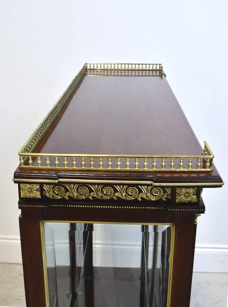 NYC Gilded Age Louis XVI Style Display Cabinet, Attributable to Leon Marcotte For Sale 4