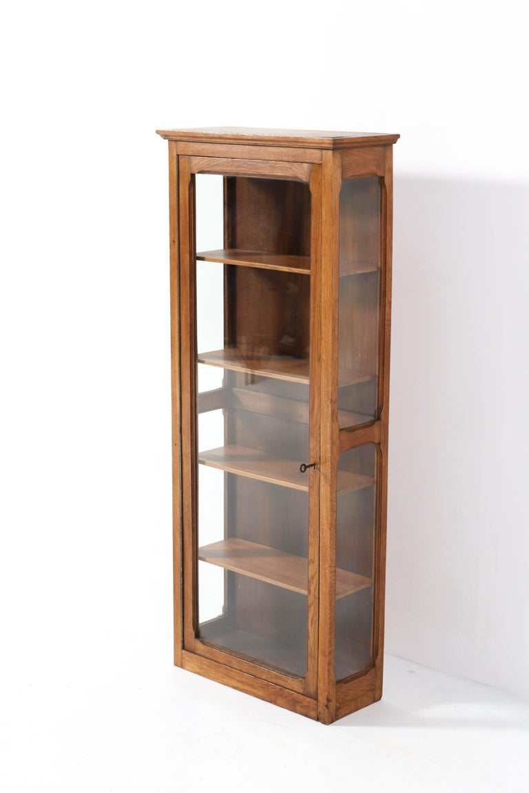 Early 20th Century Oak French Art Nouveau Wall Display Cabinet, 1900s For Sale